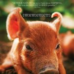 newportFILM Screening: Biggest Little Farm