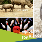 Bowling for Rhinos at AMF Cranston Lanes