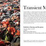 Exhibit: Transient Matter