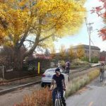 Woonasquatucket River Greenway Arts (WRGA)
