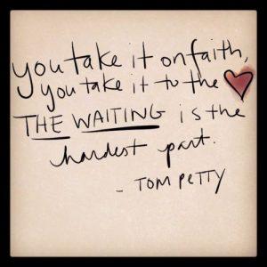 TOM PETTY TRIBUTE – DAMN THE TORPEDOES