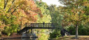 Fall Foliage Photography Workshop
