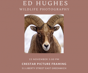Wildlife Photographer Ed Huges Gallery Opening