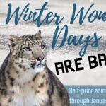 Winter Wonder Days at Roger Williams Park Zoo