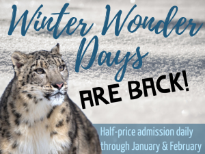 Winter Wonder Days at Roger Williams Park Zoo