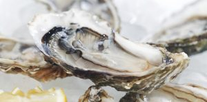6th Annual Ocean State Oyster Festival