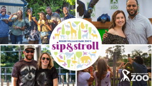 Sip & Stroll at Roger Williams Park Zoo