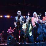 Garden City Center Summer Concert Series: Steve Smith & The Nakeds