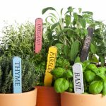 Culinary Herb Planters and Artisanal Cocktails