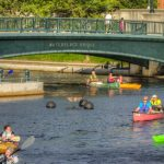 Paddle Downtown Providence!