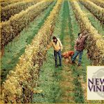Newport Vineyards Tour