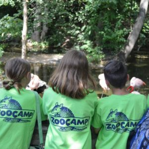 ZooCamp: Spring Adventures at Roger Williams Park Zoo