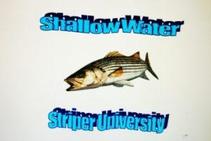 Shallow Saltwater University