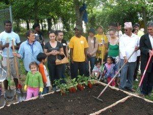 Cadillac Drive Community Garden