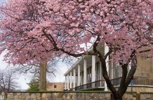 Rhode Island College - James P. Adams Library