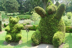 Green Animals Topiary Gardens